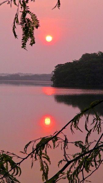 Guatemala : lever de soleil à Tikal.                              …