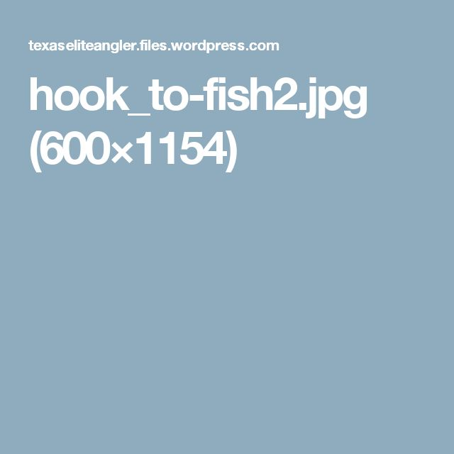 hook_to-fish2.jpg (600×1154)