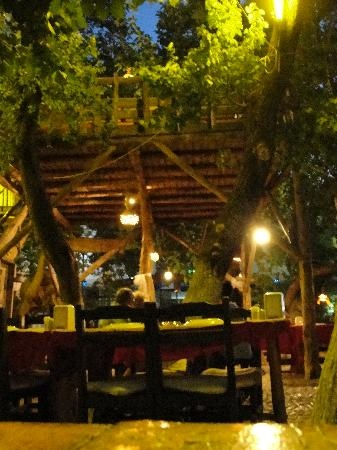 Dalyan, Turkey - Bengisu Treehouse Restaurant