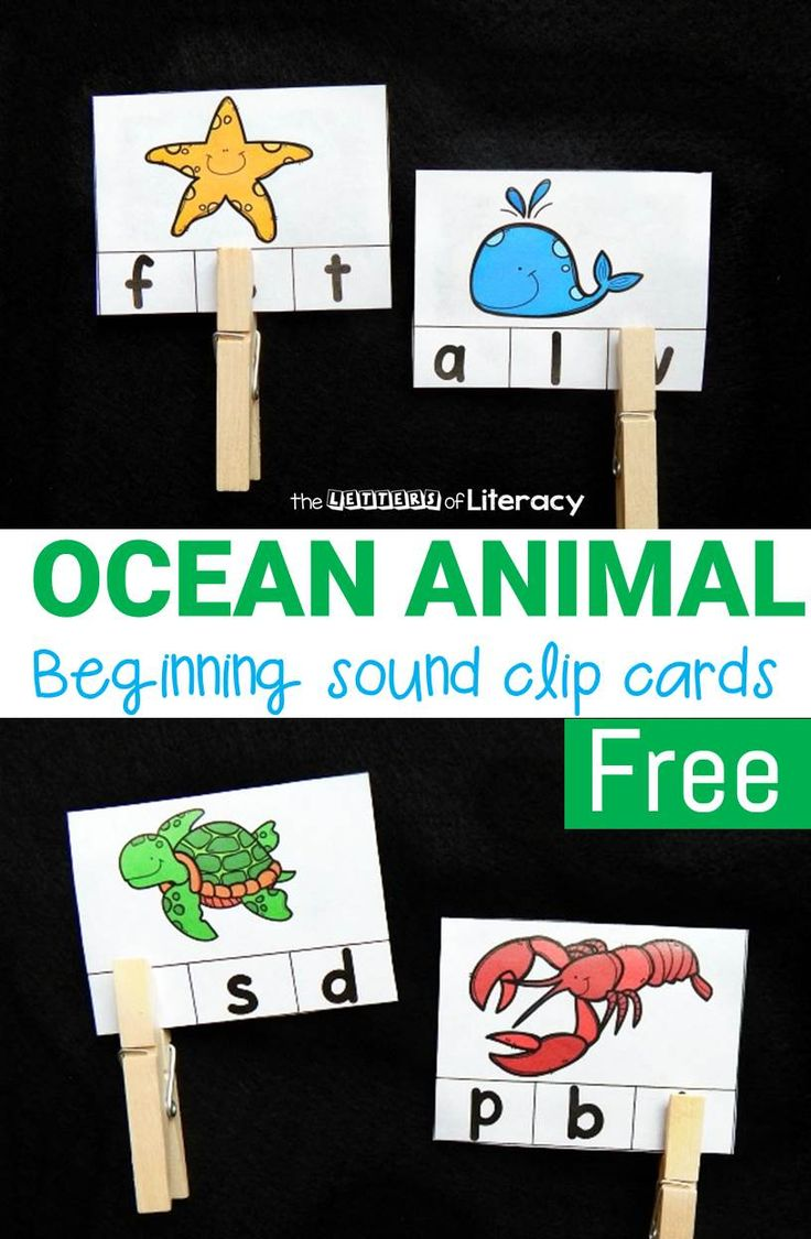 Practice identifying beginning sounds and ocean animal names with these fun and free ocean animal beginning sound clip cards! Great for beginning readers!