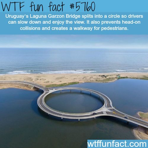 Uruguay's Laguna Garzon Bridge - Now This, is a fun fact! ~WTF fun facts