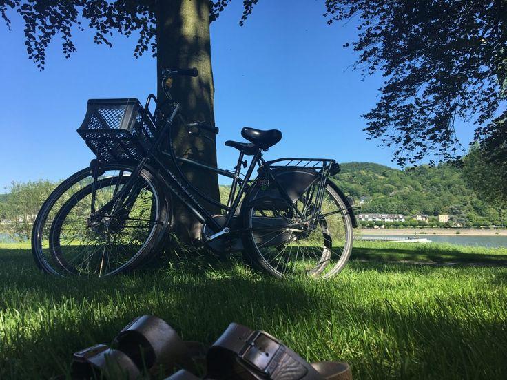 Am Wochenende haben mein Freund und ich eine Radtour gemacht. Das Wetter war einfach perfekt dafür! Wir wollten bis nach Bonn und dann noch weiter bis Bad Honnef fahren.