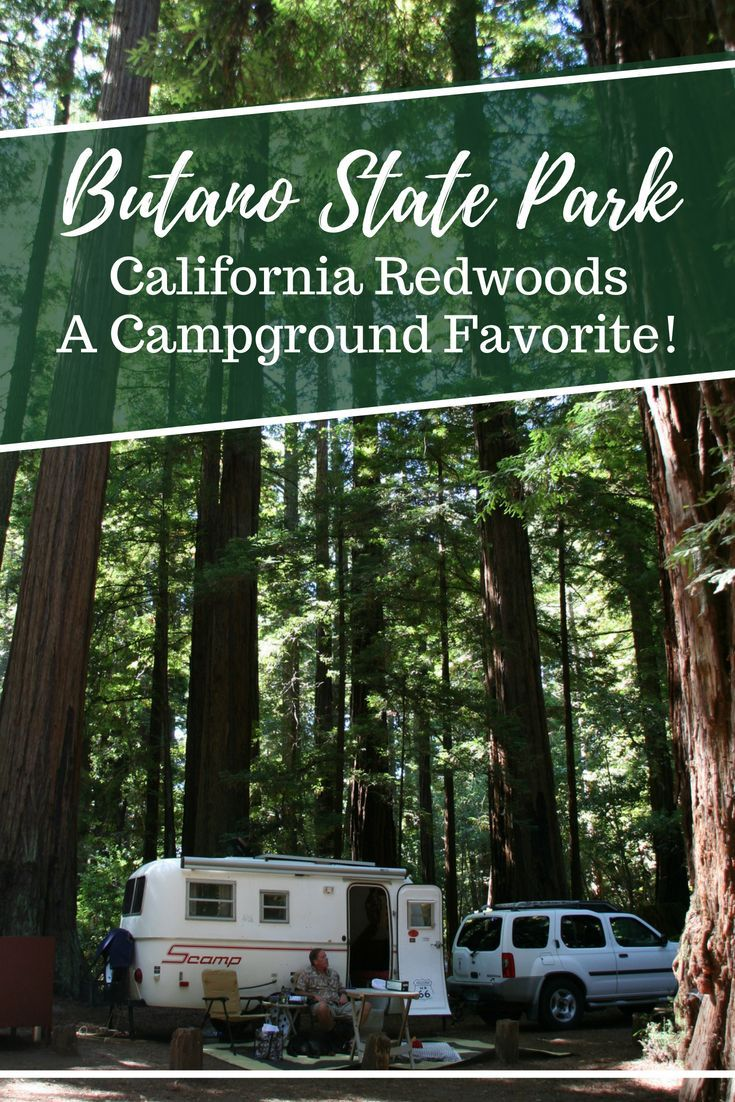 Butano State Park Campground Is A Beautiful And Peaceful California State Park Just Inland From The Coast South O California Camping State Parks Oregon Camping