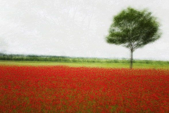 ©Jacob Gils Danish Photographer working with multiples exposure. (Between Photography and impressionistic paintings)