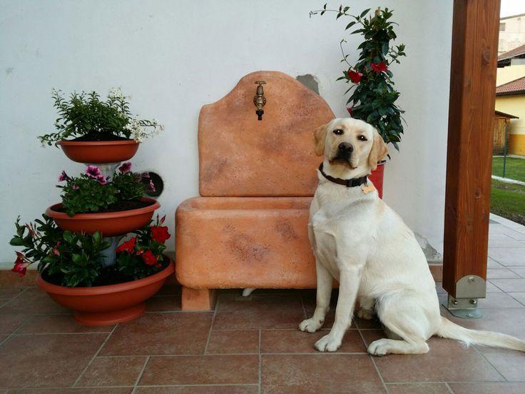 """Fontana murale in pietra ricostruita, modello: Brunico, color mattone, perfettamente sorvegliata dalla """"piccola"""" Holly! :) :)"""