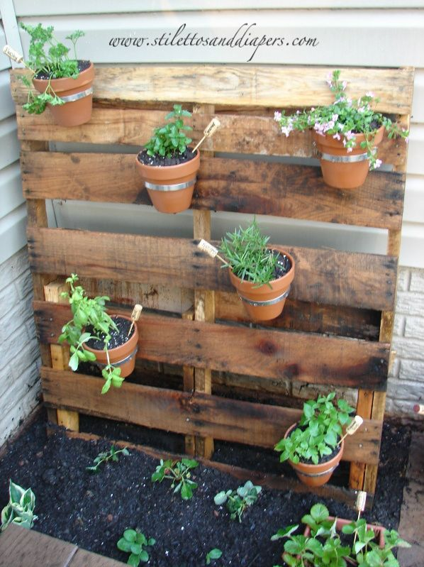 Pallet garden. Wish my yard was flat because I would definitely make a fence out of pallets and hang flowers from it!