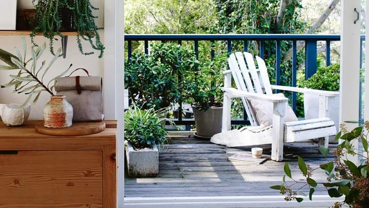 5 plants that will thrive on your balcony