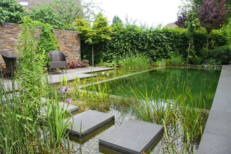 Natural pool pond and water garden with stepping stones - BioNova, NJ