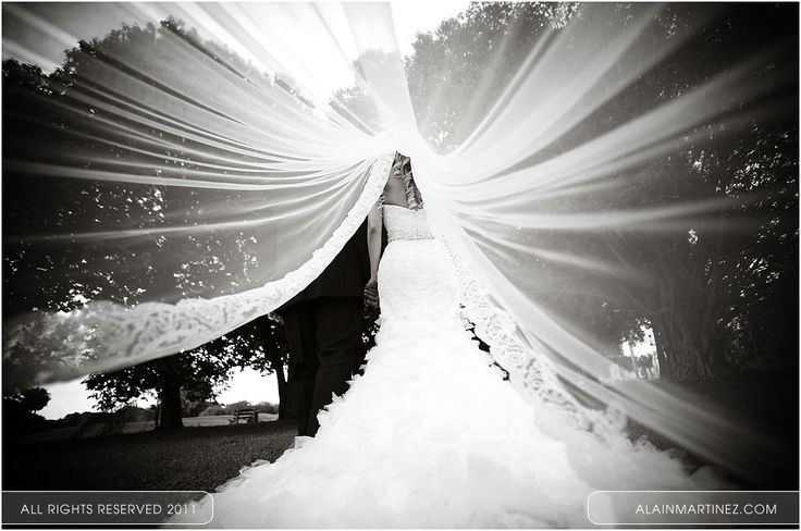 Under the veil. Gorgeous picture.