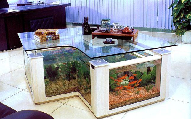 Creative fish tank ideas fish tank coffee table image for Creative fish tanks