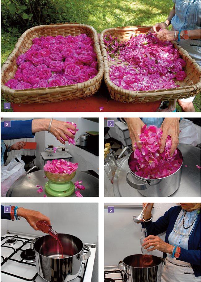 come fare lo sciroppo di rose