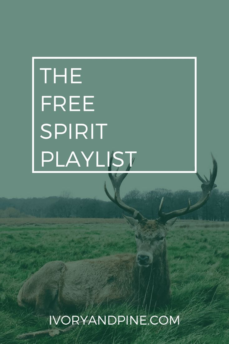 free spirit playlist | ivory & pine | music playlist | self care playlist | mental health day playlist | self love | free day playlist | music fest playlist | hippie music | boho | bluegrass | folk | hipster | indie acoustic