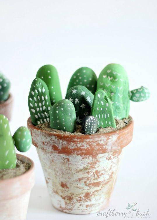 Stein-Kaktus