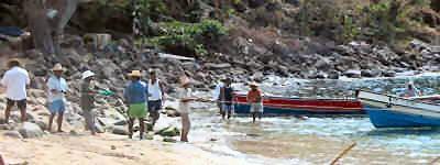 faune de la Martinique