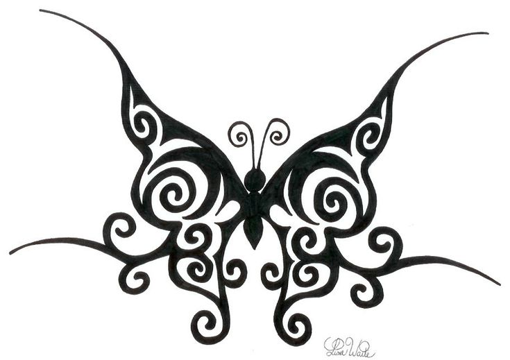 butterfly drawings tribal butterfly by lwaite on deviantart awesome butterfly pinterest. Black Bedroom Furniture Sets. Home Design Ideas