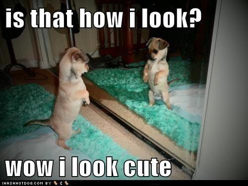 Wow, I look cute!