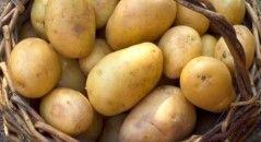 aardappelen-bewaren-stokbrood-bananen-budgi