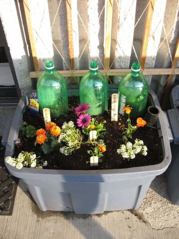 Make And Earthbox From A Rubbermaid Tote Backyard