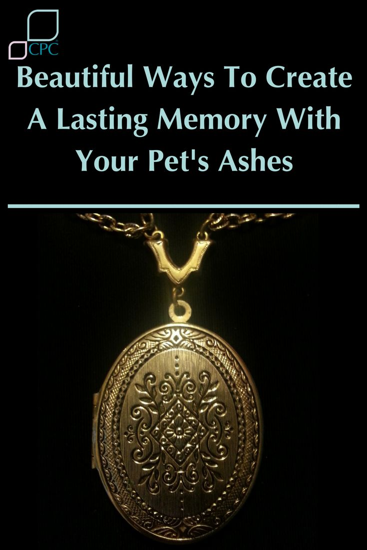 We understand that pet loss can sometimes feel surreal. One day, your once best friend and close confidant is there and then they're not.