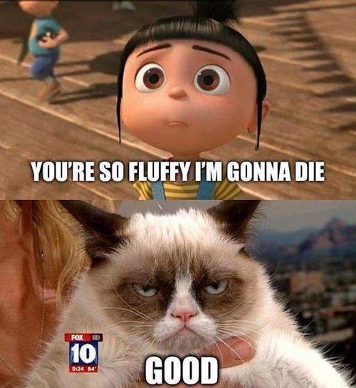 Good lol   Grumpy Cat ...