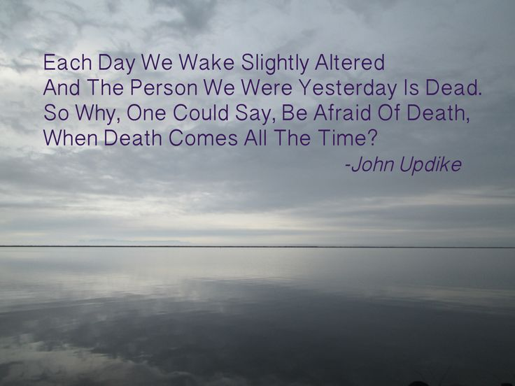 A quote that I like from John Updike about death.