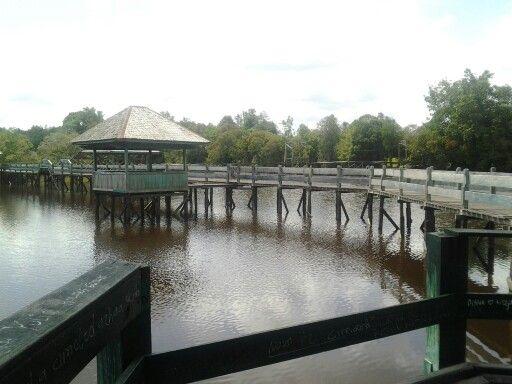 View of Tahai Lake from here...Palangkaraya - Central Borneo