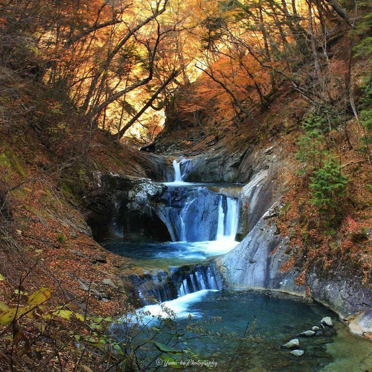 西沢渓谷・七ツ釜五段の滝 2016🍁 . この辺りの紅葉はほとんど散ってましたが、ここに辿り着くまでの紅葉は綺麗でした🍁✨ . にしても…ハイキングなんてもんではない、トレッキングな登山道に泣きそうになり、途中から撮影どころではなく前に進むのに必死でした(笑)山登り初心者にはキツかった😂一周4時間のコース、なんとか無事に帰ることができて良かったです🙈 . 今年は上高地の紅葉を絶対見にいくぞ!と去年から思ってたのを色々あって行くのやめまして😢…でも、こちらでキクちゃんにも会えたし結果オーライでした😳🎶 . Location: 山梨県 Yamanashi, Japan . #西沢渓谷 #七ツ釜五段の滝 #日本の滝100選 #紅葉 #秋 #山登り #トレッキング #ig_today #ig_dynamic #igglobalclub #curatethis1x #ig_worldclub #nature_brilliance #jhp秋色 #wp_紅葉2016 #excellent_nature #photoarena_nature #tgif_nature…