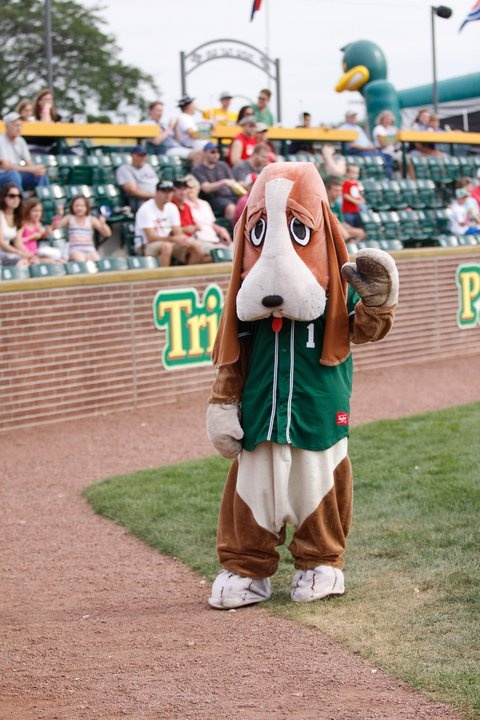 17 best images about wisconsin mascots on pinterest