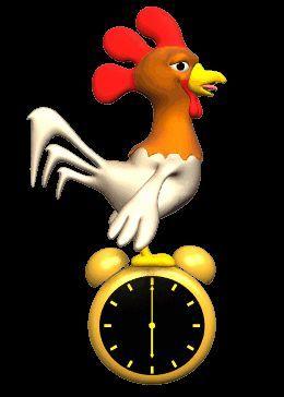 El gallo está en el reloj.