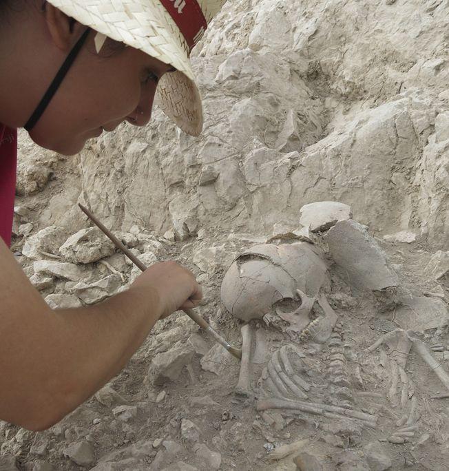 Pileta de Prehistoria: Localizan tres sepulturas de la cultura argárica en Callosa del Segura