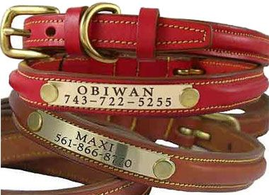 Personalized Leather Dog Collars & Leads-that way the tags can't come off.