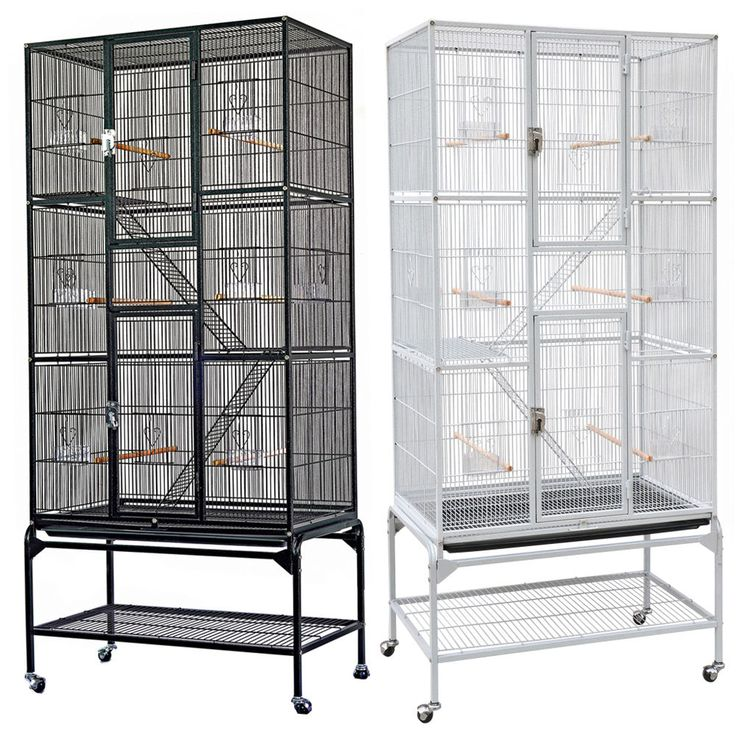 Hogie trainer bird cage camping