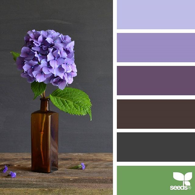 today's inspiration image for { flora hues } is by @grainandfeather ... thank you, Rowena, for another incredible #SeedsColor image share!