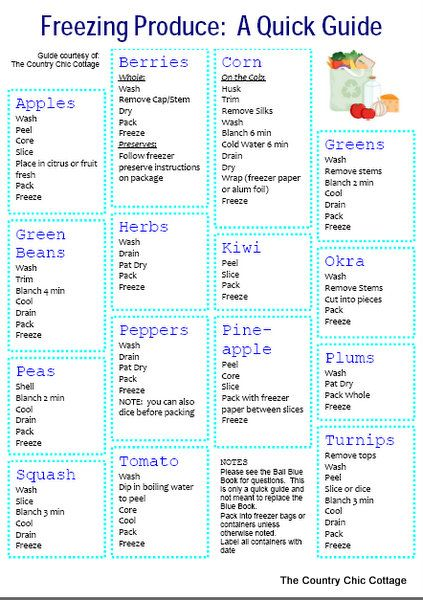 Freezing Produce Quick Guide ~ * THE COUNTRY CHIC COTTAGE (DIY, Home Decor, Crafts, Farmhouse)