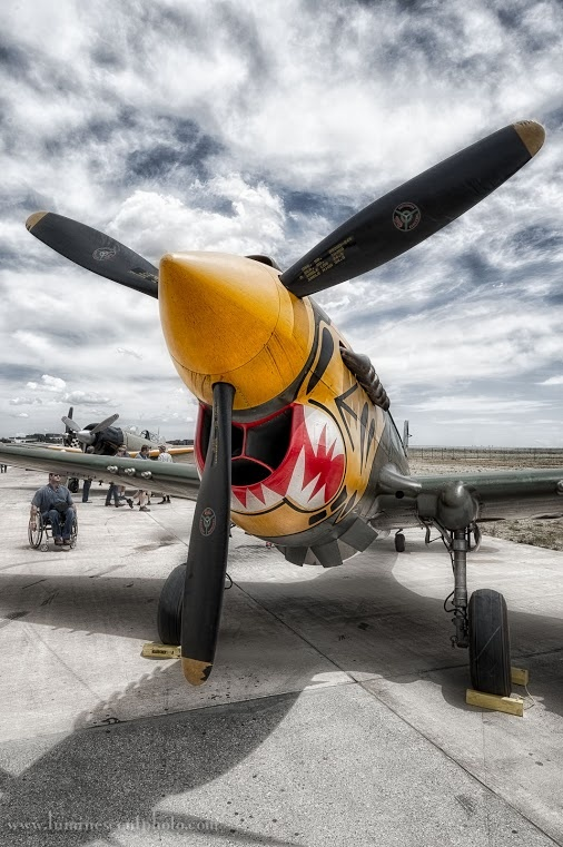 The Mighty P 40 Warhawk I Would Love To Fly One Of These