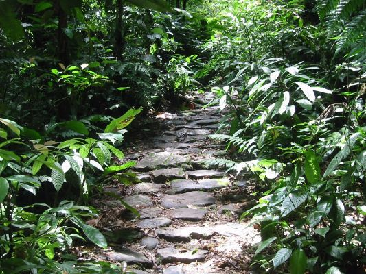Caminho Colonial do Itupava Completo - Paraná. Calango Expedições.