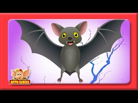 Sing along to this fun song and learn about bat echolocation, with this great…