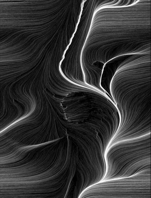 Wood lines