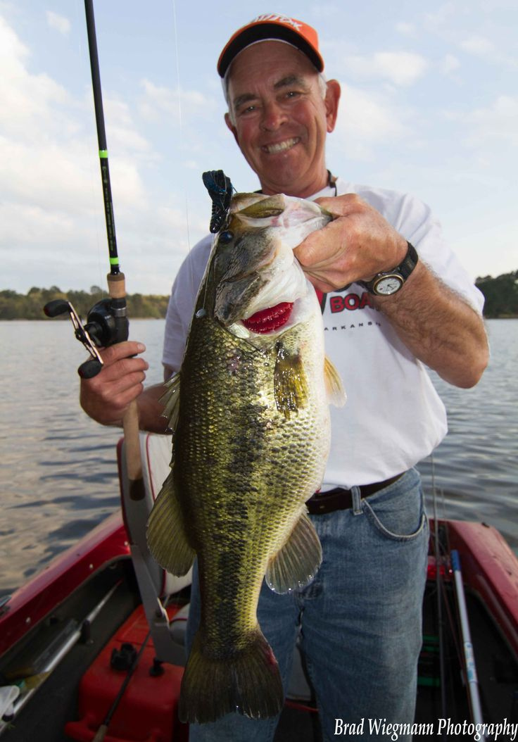 17 best shimano fishing rods images on pinterest shimano for Best bass fishing times