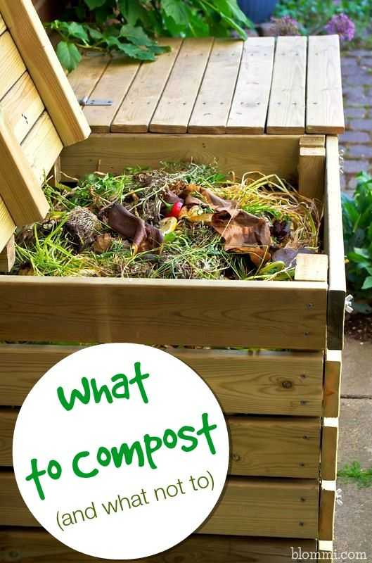 what to compost and what not to compost