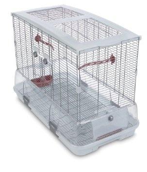 Vision Bird Cage #Bird Cage