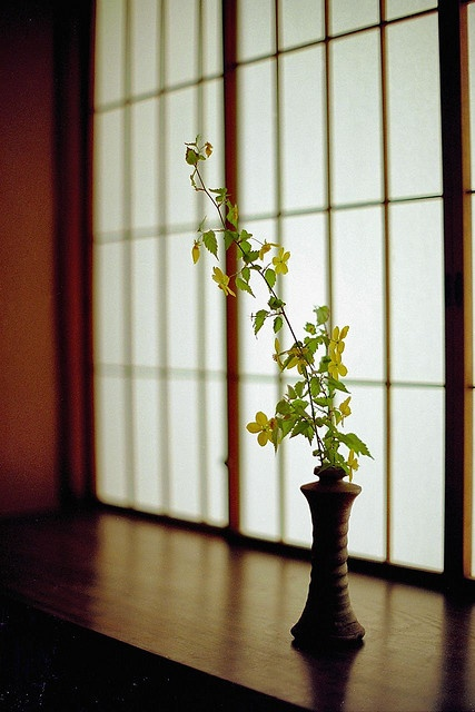 ikebana--Japanese flower arranging. A study in both simplicity and complexity