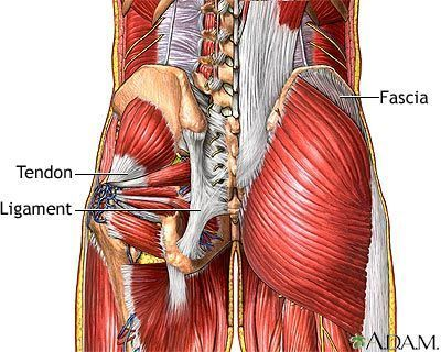 Does Myofascial Release Work for Fibromyalgia?