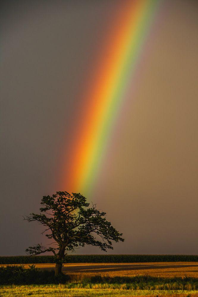 die besten 25 regenbogen bilder ideen auf pinterest regenbogen druck regenbogen zeichnung. Black Bedroom Furniture Sets. Home Design Ideas