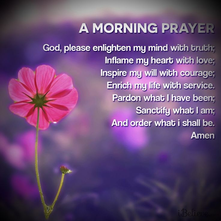 Good Morning My Love Prayer : A morning prayer for you my friend livefreelovewell