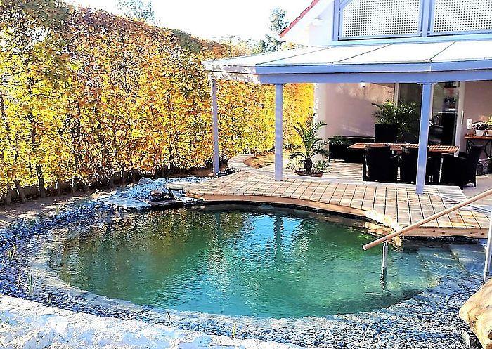 Herbstfarbe Im Nano Wohlfuhlteich Gartenpools Schwimmteich Hauser Mit Pool