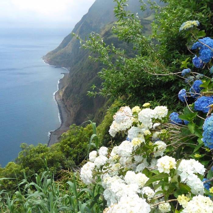 Azorenhoch: Flug in die Hauptstadt der Azoren ab 22 Euro