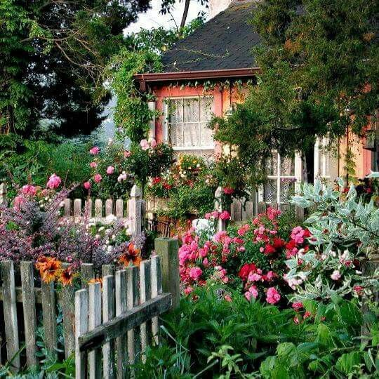 9 Cottage Style Garden Ideas: 250 Best Images About Beautify With Flowers : Fence On