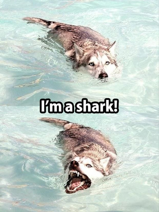Me...every time I go swimming with the kids...haha