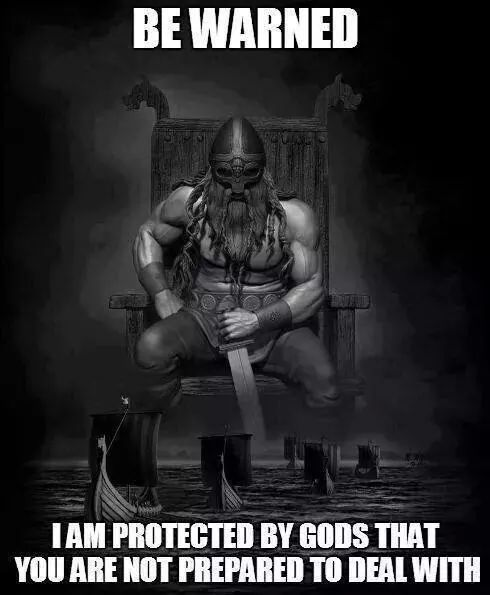 Bilderesultat for This man is protected by a viking girl